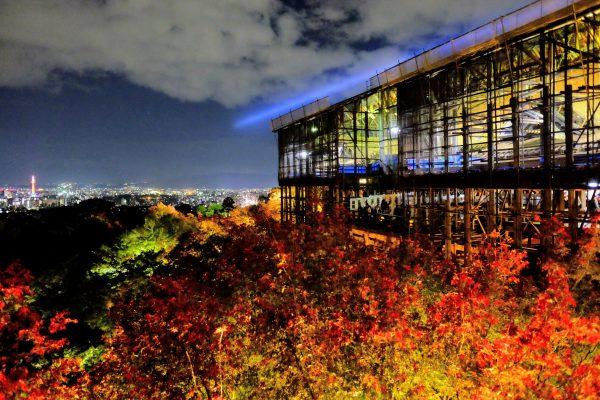 高台からの景色。青く伸びる光と色づいた紅葉が幻想的。