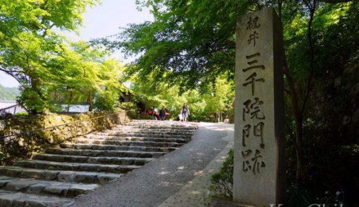 【京都】大原三千院・寂光寺への安い・お得なアクセス方法