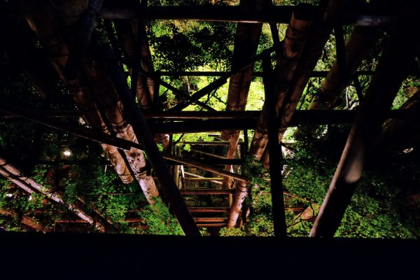 清水寺の舞台を覗き込む。落ちたら確実に死ぬ。