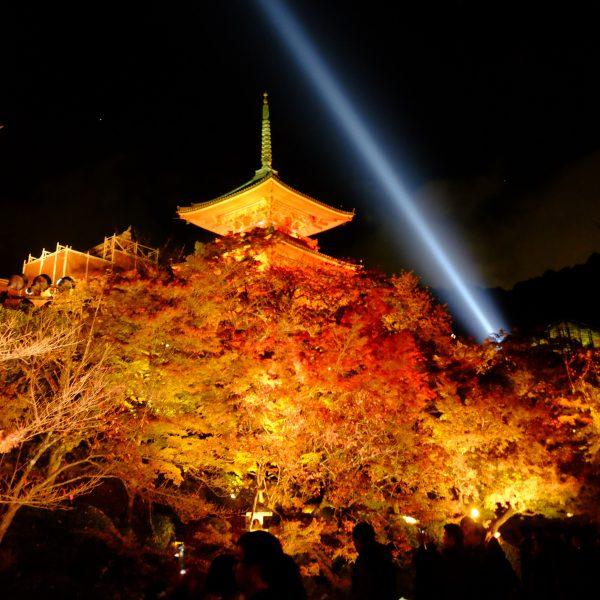 清水寺から市内の方へ、青い光が伸びていく。